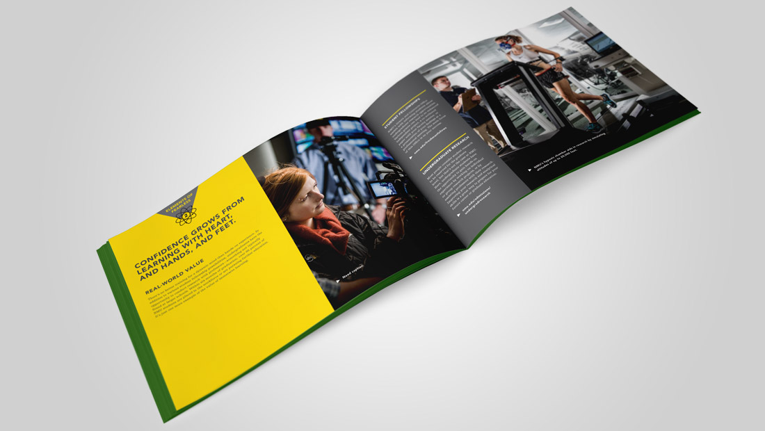 Spread from Viewbook showcasing the Elements of Fearless concept.