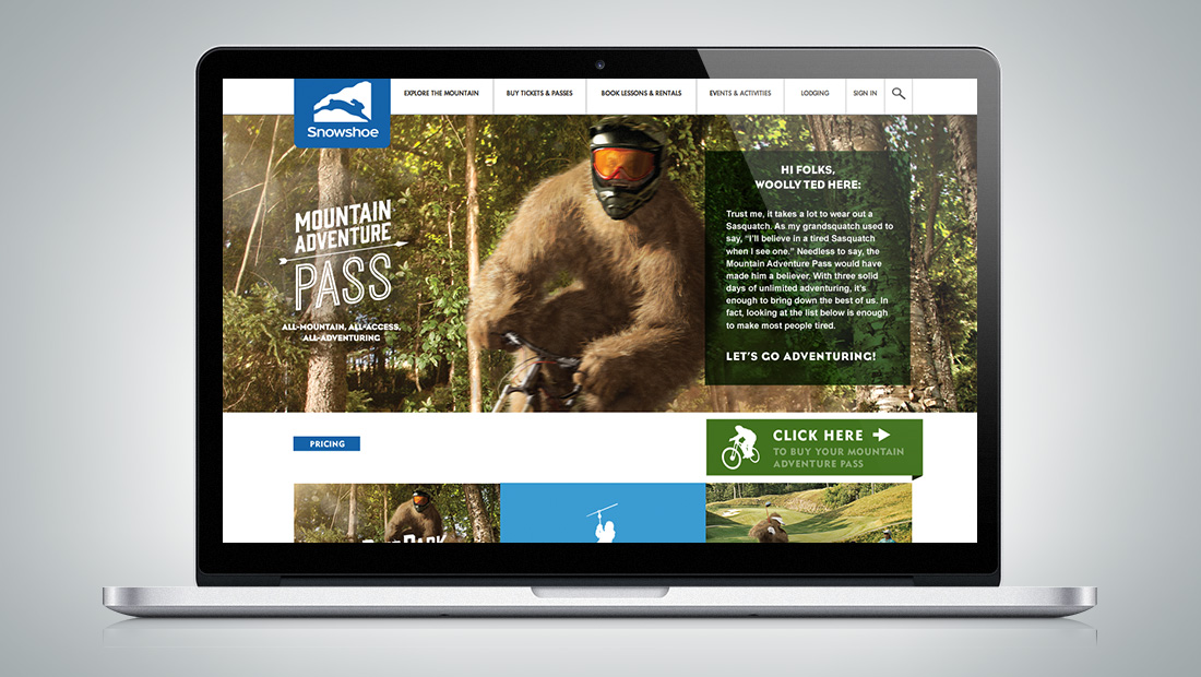 Landing page for the Mountain Pass product.
