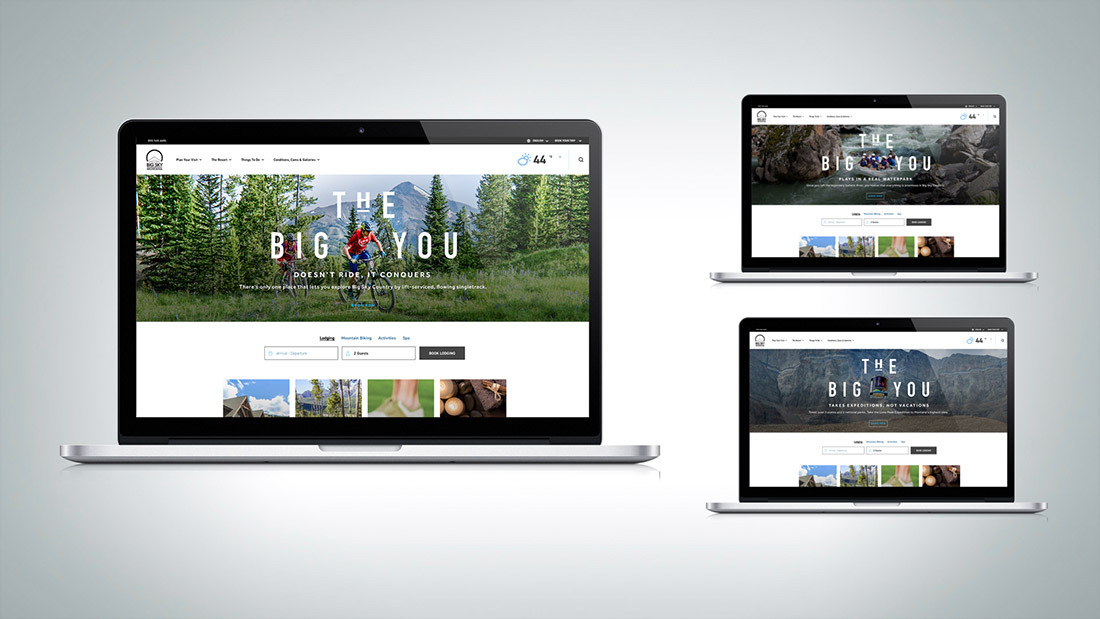 On the website, The Big You's brand message becomes tactical by directly tying to a product.